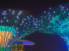 Starbusts (elenaleong) Tags: nightscape supertreelights elenaleong supertree gardensbythebay mbs landmark architecture