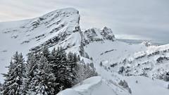 Pointe d'entre Deux Pertuis (2176m) - Haute Savoie - France (Felina Photography - www.mountainphotography.eu) Tags: pointedentredeuxpertuis hautesavoie france frankreich frankrijk francia alpi alpen alps ciaspole ciaspolata sneeuwschoenwandeling tour hike montagna mountain schnee montagne