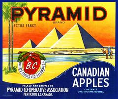 Pyramid Apples (JFGryphon) Tags: pyramidshaped falseadvertising canadianapples pentictonbc pyramidcooperativeassociation 1935 applecratelabel fruitcratelabel bctreefruitslimited kelownabc pyramids desert camel egypt