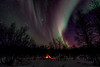 Northern Lights over tipi in the Arctic Circle (nickymstevenson) Tags: northern lights tipi arctic stars trees