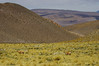Barren landscape of Argentinian Altiplano (Gregor  Samsa) Tags: argentina argentinian trip roadtrip journey exploration adventure outdoors scenery scenic altiplano barren eerie landscape highaltitude settlement