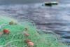 be prepared (ToDoe) Tags: prepared ready net netz boote fischerboot green grün water wasser fischernetze fishnet fishingnet