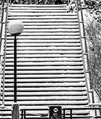 Not o'er Yet ... Winterscape 2018 # 81   ... ; (c)rebfoto (rebfoto ...) Tags: lines stairway winterscape snow snowandmoresnow rebfoto