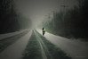 """Cycliste courageux ... ( P-A) Tags: bise chemin courageux cycliste froid grésille hiver long neige rafale route vent nikond300s photos simpa© boul lucerne deschênes qc magicmoments """"nikonflickraward"""" cielspaysages"""