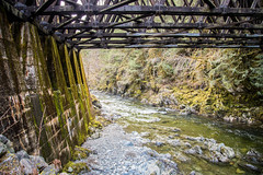 Kinsol Trestle (Every Day Images) Tags: erniedickey canada canon vancouverisland britishcolumbia travel explore westcoast west googleearth kinsoltrestle shawniganlake morning morninglight nature sharevi victoriabuzz explorebc canon6dmark2