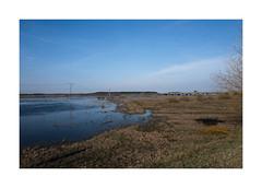 Pripyat River (Jan Dobrovsky) Tags: river pripyat countryside landscape ukraine volyn color leica leicaq spring mood atmosphere