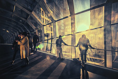 (A Great Capture) Tags: agreatcapture agc wwwagreatcapturecom adjm ash2276 ashleylduffus ald mobilejay jamesmitchell toronto on ontario canada canadian photographer northamerica torontoexplore winter l'hiver eatoncentre hudsonsbay bridge passageway passage people sunset sundown man woman indoors interior architecture queenstreet west pedway skybridge