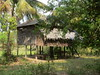 IMG_3151 (Jason Church) Tags: pottery archaeology cambodia museum tani