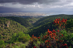 Palma de Mallorca (basic hiking) Tags: spain spanien mallorca majorca balearicislands landscape city panorama palma mountains valley mediterranean ilce5100 sonyalpha selp1650 a5100 sky clouds