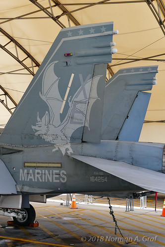 "McDonnell Douglas F/A-18D Hornet of VX-9 ""Vampires"" from NAWS China Lake"