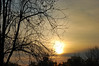 Hazy Sunshine. (dccradio) Tags: lumberton nc northcarolina robesoncounty sunrise risingsun saturday saturdaymorning morning goodmorning nature natural outdoors outside tree trees sky clouds morninglight nikon d40 dslr branches sticks treebranch treebranches treelimbs