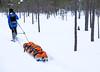 DSCF4554-Mikko-Ilmoniemi.jpg (jkl_metsankavijat) Tags: 35mm jyme jyväskylänmetsänkävijät partio xt1 eräkämppä kylmä lumi lämpö nuotio pakkanen partiohuivi partioscout pimeys scout scouting seikkailijat talvi talvivaellus trangia tuli vaellus vaeltaminen ystävät