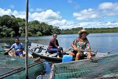 Fish farming on Rio Tapajos (JuhaOnTheRoad) Tags: brazil amazonia para river fishing fishfarm woman girl boat tapajos arapiuns amazon