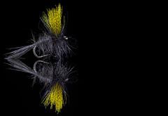 Fishing Fly Yellow on Gray (KellarW) Tags: mirror fishingfly reflection flyfishing blackacrylic fly mirrormirror onblack fishing mirrored blackandyellow grayandyellow reflected black grey fishinglure yellow greyandyellow gray