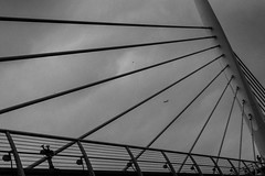 rays of steel / compartmental (Özgür Gürgey) Tags: 2018 bw d750 goldenhorn nikon airplane architecture birds bridge clouds grainy grey people rays sky subway tilted istanbul