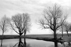 La mare de Tremblay-les-Villages (Philippe_28) Tags: tremblaylesvillages 28 eureetloir france europe 24x36 argentique analogue camera photography film 135 bw nb