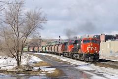 A solid train of cylindrical hoppers (Michael Berry Railfan) Tags: cn874 graintrain montreal montrealsub sthenri cn canadiannational freighttrain train unittrain ge generalelectric cn2342 cn2582 gevo es44dc dash9 dash944cw mglx mobilgrain