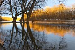 Grand River golden sunset