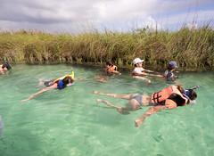 day ten in sian ka'an (dolanh) Tags: mexico swimmers siankaancommunitytours boattrip siankaan bioreserve yucatan mangroves