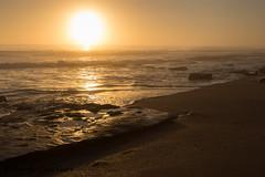 Golden Sunrise (ChrisF_2011) Tags: florida marineland rivertosea beach scenic landscape sand coquina