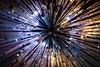 tubes (primemundo) Tags: tubes lookingup odc lights cluster