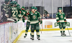 IAWild-5361 (Iowa Wild) Tags: iawild hockey ahl justin kloos gerry mayhew sam anas brennan menell carson soucy