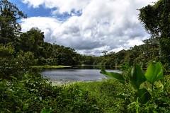 El Arenal Costa Rica (chris_speuz) Tags: costarica elarenal