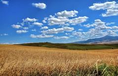 Colline Toscane (giannipiras555) Tags: colline toscana nuvole colori natura panorama landscape valdorcia