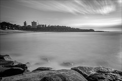 Can't see the people (JustAddVignette) Tags: australia blackandwhite clouds cloudysunrise dawn freshwaterbeach landscapes longexposure monochrome newsouthwales northernbeaches ocean rocks seascape seawater sky sunrise sydney water waves