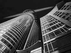 DZ-Bank Frankfurt a. M. (Thunderbird61) Tags: dzbank skyscraper hochhaus frankfurtam sw zw nb bw schwarzweiss zwartwit blackwhite blackandwhite noirblanc noireetblanc neroyblanco neroblanco monochrome mono monochrom pentax pentax645z mediumformat architecture architektur lookingup pentaxart house urban