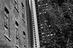 Windows Oppression (Dekhana Photo) Tags: windows blackandwhite black white density oppression building condos towers downtown skyscraper montreal canada quebec canon 5d dekhana brick wall architecture highrise andregenel