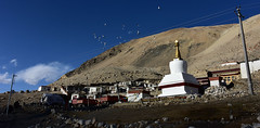 Between the poles - Tibet (Harald Philipp) Tags: ronghbuk rongbuk hotel monastery tibet birds everest basecamp rural highaltitude nikon d810 rongbu rongwu monks stupa buddhist nikkor flock himalayas mountains hills dry arid rocky rocks utilitypole electriclines