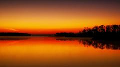 Light (Tim Pohlhaus) Tags: dundee creek wetlands marshy point salt marsh baltimore county maryland chesapeake bay