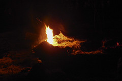 DSCN4217 (David J. Thomas) Tags: mirrorlake blanchardspringsrecreationarea fiftysix mountainview arkansas forestfire proscribedburn flames