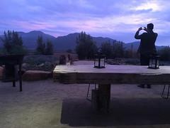 IMG_2368 (ellwoodite) Tags: mexico valle de guadalupe wine bruma fauna