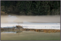 Garmisch Partenkirchen (adr.vesa) Tags: forest fog mist lake rural nature garmisch germany bavaria bayern