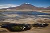 Salar de Ascotán. Antofagasta. Chile. (Lucas Burchard) Tags: volcán vulcano