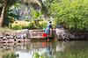 It must be wash day! On the Kerala Backwaters. (amanda & allan) Tags: india alleppey kerala riceboat riceboats palmtrees palms backwaters veniceoftheeast