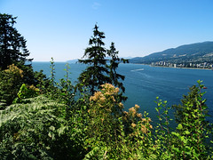 DSC01218 (RD1630) Tags: stanleypark vancouver canada kanada america north outside outdoor landscape landschaft water summer vacation travel trip reise park