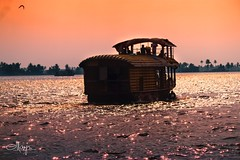 💥 A kind of golden hour one remembers for a life time... Everything was touched with MAGIC 💥 (:::. Mänju .:::) Tags: keralatourism tourism india goldenhour alappuzha houseboat kumarakom kerala godsowncountry