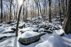 Ice Storm [02.08.18] (Andrew H Wagner   AHWagner Photo) Tags: mountain maryland md nature landscape outdoors cunninghamfalls cunninghamfallsstatepark thurmont winter snow ice frozen explore exploration exploring hiking trees tree 5dmk3 5d3 5dmkiii 5dmarkiii 5dmark3 ultrawideangle wideangle canon eos 1635l 1635mm f4 f4l is usm