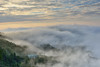 Misty, Mountain Dalun大崙山 (Vincent_Ting) Tags: 大崙山 茶園 teafield 夕陽 sunset 雲海 seaofclouds 雲霧 fog misty tea 鹿谷鄉 南投縣 台灣 taiwan 雲瀑 雲彩 clouds tree sky 銀杏森林 武岫農圃 vincentting 琉璃光 星軌 startrails