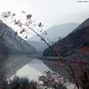 La Morava occidentale (philippeguillot21) Tags: rivière gorges morava serbie yougoslavie balkans europe pixelistes voigtländer