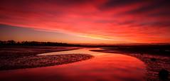 The Way Out (ajecaldwell11) Tags: ahuririestuary sunset ankh purple water reflections fujifilm light pandorapond tide newzealand napier pink hawkesbay rocks sky ahuriri mud caldwell clouds dusk