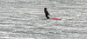 Encore un effort (maoby) Tags: bk encore effort nikon d2h neige 300mm