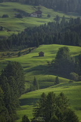Green (Luca Enrico Photography) Tags: montagna mountain verde prati pascoli grass landscape alba down trantino dolomiti altabadia lavilla