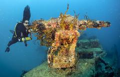 _DSC7170 (RasDive) Tags: guam dive mda kitsugawa maru wreck