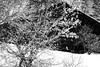 Chalet enneigé (La Pom ) Tags: savoie haute combloux ski neige piste montagne noir blanc