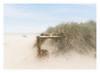 Dunes and Daytrippers (MixPix ) Tags: beach sand sandbanks dorset uk holiday dunes grass pastel