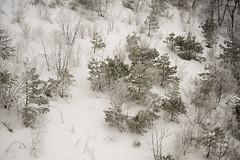 Korea:  Deogyusan Snow (doug-craig) Tags: deogyusan20150211d700 korea mujudeogyusan asia travel snow winter stock nikon d700 journalism photojournalism dougcraigphotography